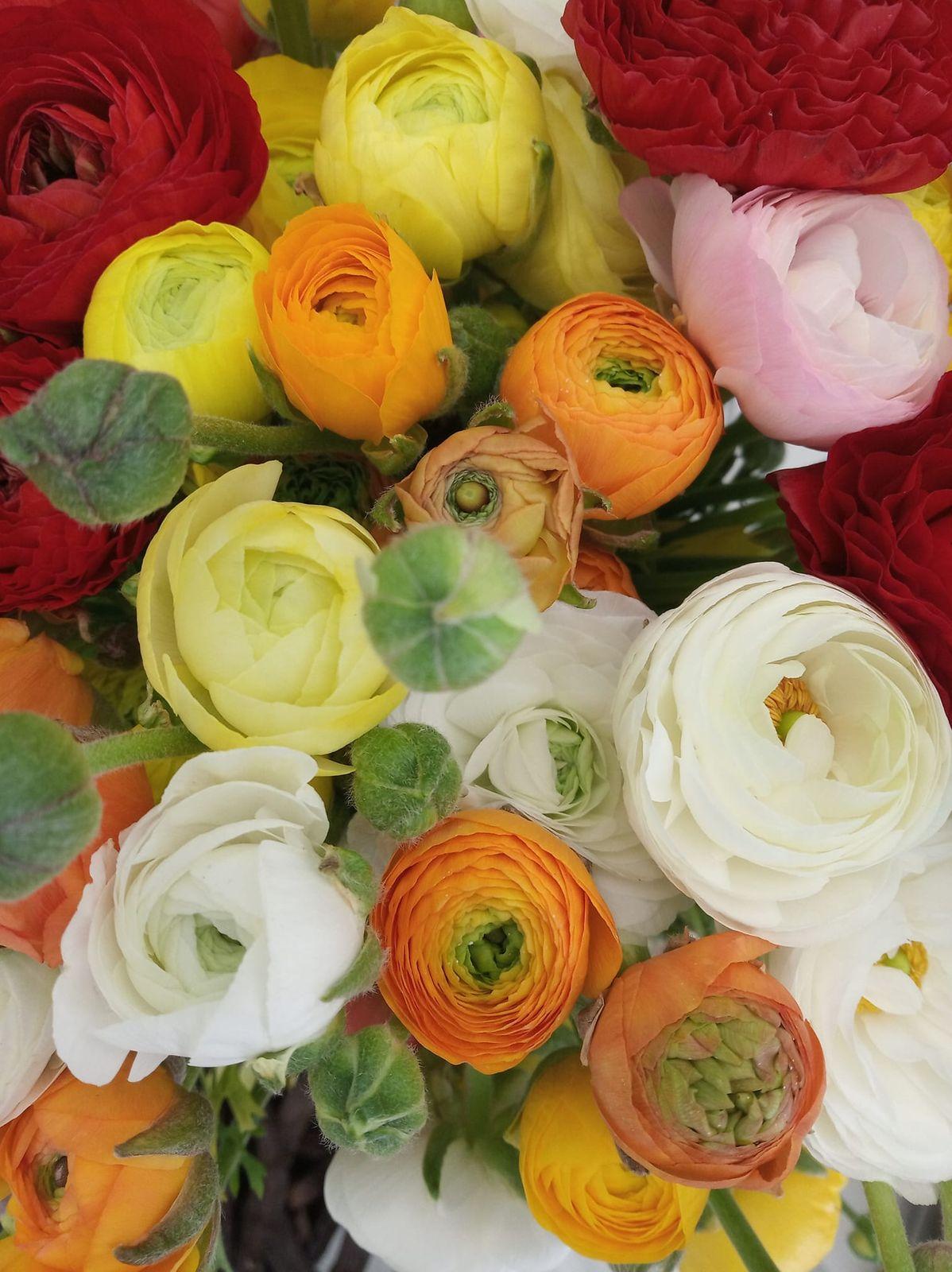 Καλημέρα, καλή εβδομάδα και καλή δύναμη σε όλους!  #psomotirifarbetterfood #colours #flowers #healthylife #healthyfood #staystrong #stayhealthy #stayhome #μένουμεσπίτι